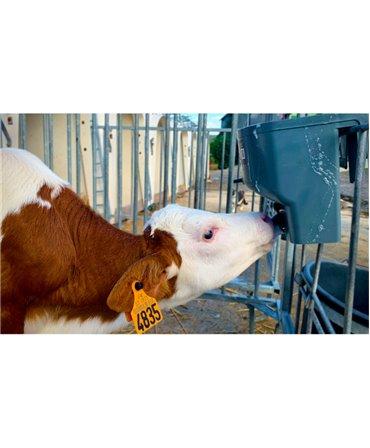 Galeata cu tetina pentru alaptarea viteilor, Milk Bar, 4l cu sistem fixare tetina, pozitia corecta la supt