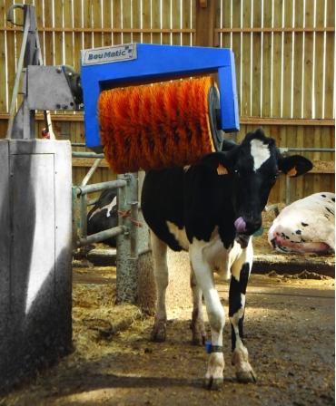 Perie rotativa automata pentru vaci, BouMatic HandyBrush
