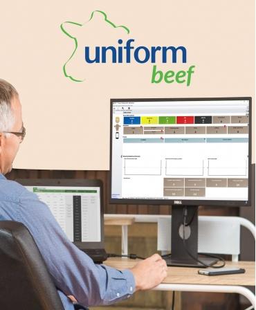 Uniform Beef