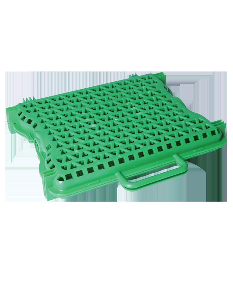 Caseta plastic coloQuick
