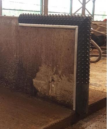 Scarpinatoare pentru vaci din cauciuc natural, Bioret Dairy Scratchy montata pe verticala si orizontala