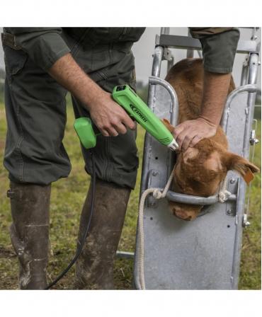 Ecornator electric Express Farming Cosmos, pentru vitei, in lucru