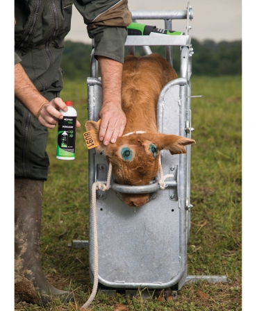 Spray dezinfectant Express Farming Duoclean, in lucru la vitei