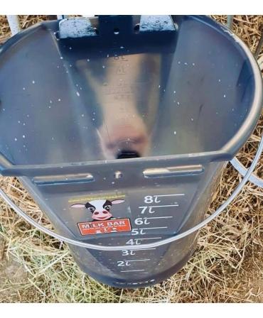 Galeata cu tetina pentru alaptarea viteilor, Milk Bar, 9l, semitransparenta, cu vitel care suge
