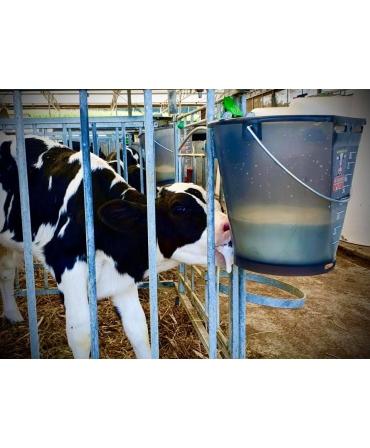 Galeata cu tetina pentru alaptarea viteilor, Milk Bar, 9l, semitransparenta, cu vitel care suge, vedere din lateral