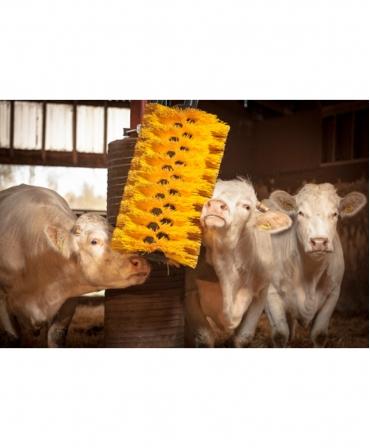 Perie scarpinat animale mecanica, oscilanta, EasySwing Maxi, scarpinat eficient