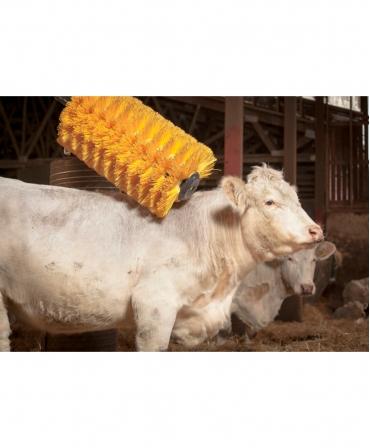 Perie scarpinat animale mecanica, oscilanta, EasySwing Maxi, in ferma