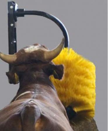Perie scarpinat animale mecanica, oscilanta, EasySwing Midi, vaci