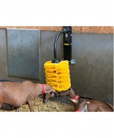 Perie scarpinat animale mecanica, oscilanta, EasySwing Midi, capre in ferma