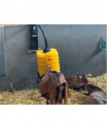 Perie scarpinat animale mecanica, oscilanta, EasySwing Midi, capre periate