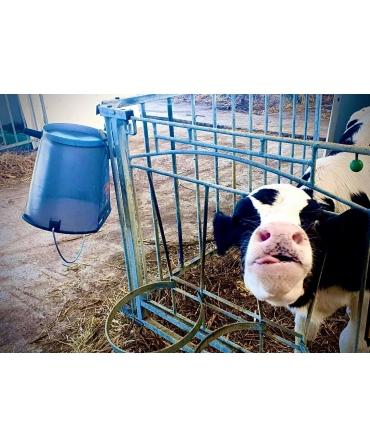 Galeata cu tetina pentru alaptarea viteilor, Milk Bar, 9l, semitransparenta, cu maner metalic, atarnata invers pentru scurgere