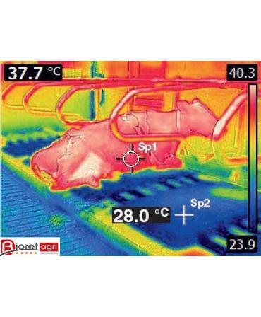 Saltea de odihna pentru vaci, pe pat de apa cu climatizare, AQUACLIM, thermo