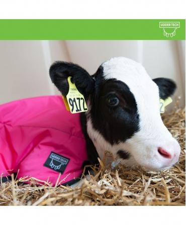 Jacheta vitei Udder Tech, nailon - rezistenta la apa, roz/negru, vitel culcat