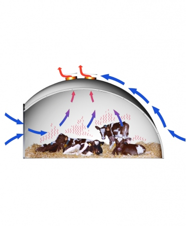 Boxa comuna vitei tip Igloo, H&L, din fibra de sticla, curenti aer