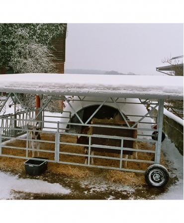 Veranda Igloo H&L, structura de baza fara acoperis, iarna