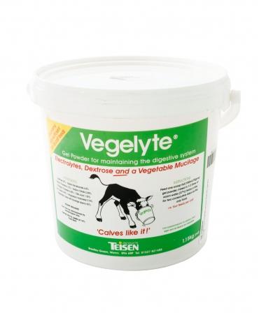 Electroliti pe baza vegetala Teisen Vegelyte, galeata 1,15 kg, produs