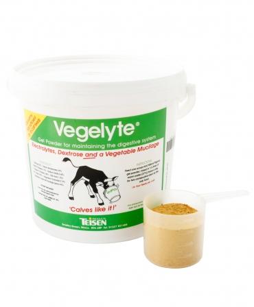 Electroliti pe baza vegetala Teisen Vegelyte, galeata 1,15 kg, galeata cu recipient