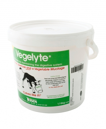 Electroliti pe baza vegetala Teisen Vegelyte, galeata 1,15 kg, profil