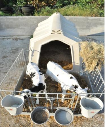Boxa comuna pentru 2-3 vitei, Calf-Tel TwinHutch cu FlexyFence H&L, vitei