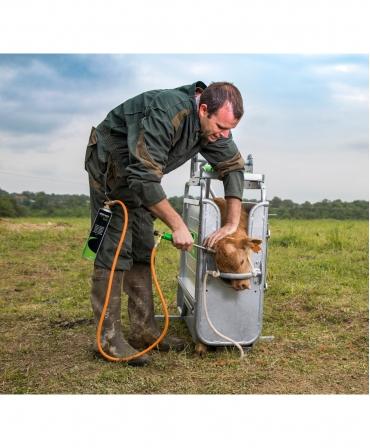 Ecornator cu gaz Express Farming Daos pentru cartus de gaz, in timpul ecornarii