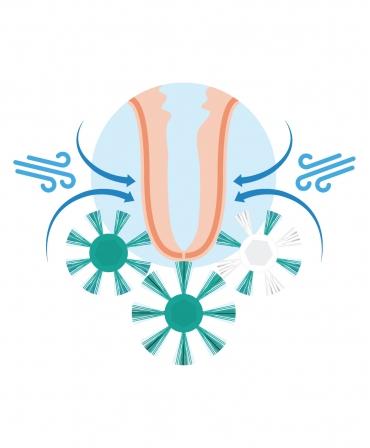 Perie curatare mameloane Northern Sanicleanse, spalare, igienizare, stimulare si uscare