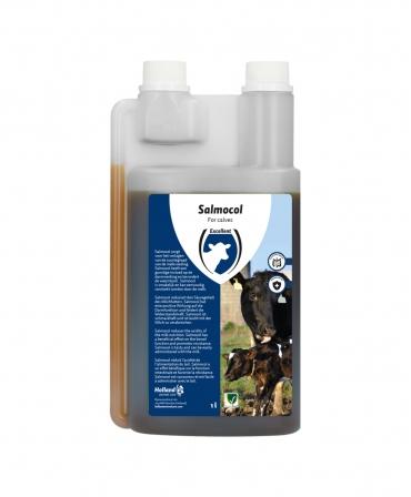 Acidifiant pentru vitei, Excellent Salmocol, flacon 1000 ml